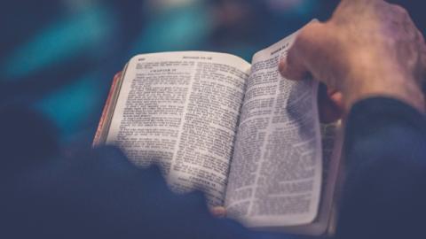 Domande sulla bibbia: esiste davvero la via della vita eterna nella Bibbia?
