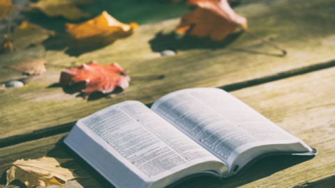C'è la parola di Dio al di fuori della Bibbia