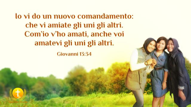 Io vi do un nuovo comandamento: che vi amiate gli uni gli altri. Com'io v'ho amati, anche voi amatevi gli uni gli altri.