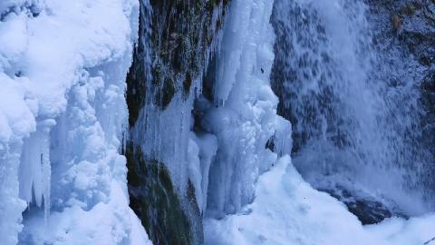 Testimonianze di miracoli - Come sono sopravvissuta dopo essere caduta nel ghiaccio