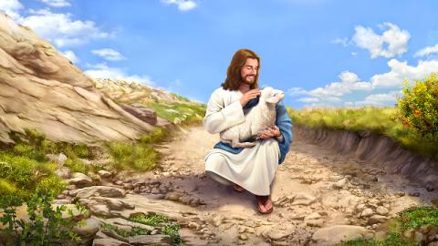 La parabola della pecorella smarrita mi ha permesso di comprendere la volontà di Dio di salvarci