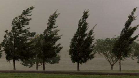 Sono sopravvissuta miracolosamente a una devastante tempesta illesa