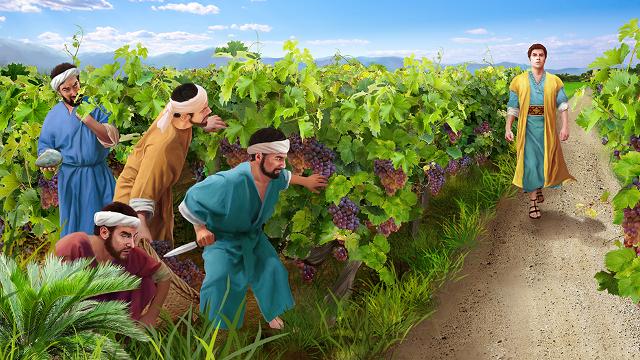 parabola dei lavoratori della vigna