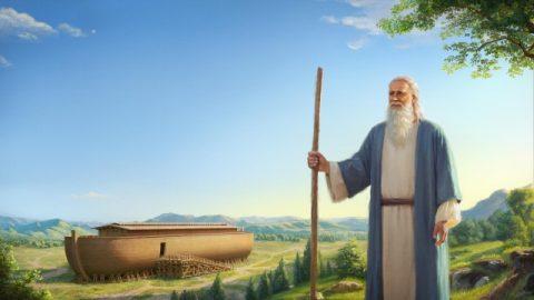 Meditazione del vangelo di oggi: l'intenzione di Dio dietro la storia dell'arca di Noé