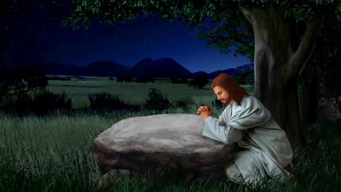 Identità di Gesù: il Signore Gesù è il Figlio di Dio o Dio Stesso?