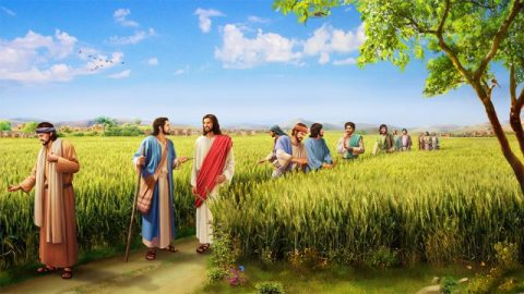 Meditazioni bibliche: cosa ci diceva il fatto che il Signore Gesù non osservava il sabato?