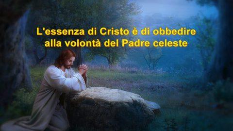 L'essenza di Cristo è di obbedire alla volontà del Padre celeste